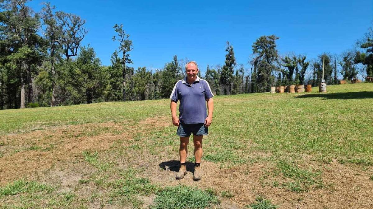 TODAY: Vince Ingold at the site where he lost millions of bees, hives and honey last year. The grass has returned but it'll take a lot long before the trees are flowering again.